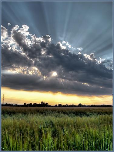 http://farm1.static.flickr.com/63/171449609_ca3f8640df.jpg