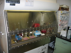 Lab photo by Mr D Logan on Flickr licensed under Creative Commons
