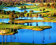 Curvy Ponds and Palms (ms4jah) Tags: california ranch santa county ca people hot club del dinner golf mar san sandiego air country north balloon diego course passengers coastal valley carmel fe ballooning fairbanks rancho interestingness23 i500 nikonstunninggallery ms4jah sunballoon7806 abigfave