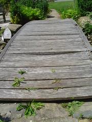 Rickety Bridge (dymero) Tags: family dog lake water reunion garden picnic speedboat molly familyreunion tubing doggie shocked unclebob
