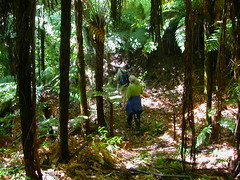 Sudarshanaloka bush walk 4
