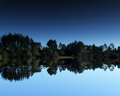 reflected (EssjayNZ) Tags: trees newzealand lake reflection water reflections 2006 waikato essjaynz taken2006 5hits joneslanding sarahmacmillan