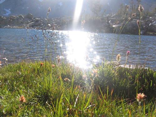 Sun reflecting