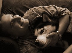 (jo.vanka) Tags: dog sepia brother pies pas brat tomek urodziny