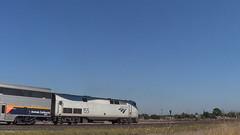 AMTK 155 (GE P42DC) in Alviso, CA (Train&Airplane Photographer) Tags: california up sanjose amtrak sanfranciscobayarea unionpacific alviso milpitas californiacoastline kcs acex dash9 gevo kansascitysouthern sd70m amtk amtrakcalifornia c449w cdtx sd70ace cabcar p42dc upcoastsubdivision sd59mx f40ph3c altamontcorridorexpress upwarmspringssubdivision mrvsj19 californiarailfanning
