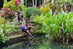 Disturbing the Pond Residence (myview11) Tags: travel temple 1 pond nikon gunung pura v1 kawi myview11