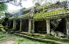 Ruins of Ta Prohm, Cambodia-35 (John Shedrick) Tags: asia cambodia angkor siemreap ruins temples historic unesco khmer hindu sonya6000 sel1018f4lens taprohm junglelike unrestored trees letchins