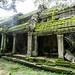 Ruins of Ta Prohm, Cambodia-35