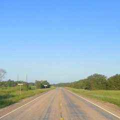 The Road Ahead. Day 154. Rt. 616 in Francitas. Getting back into a rhythm and Savannah is starting to get used to walking beside me. More long roads and small towns ahead, gonna tune in to some RadioLab and let the miles flow by. #TheWorldWalk #travel #ww