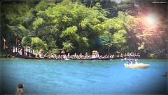 IMG_3964 (|| Nellickal Palliyodam ||) Tags: india race boat snake kerala krishna aranmula avittam parthasarathy vallamkali palliyodam malakkara nellickal jalothsavam
