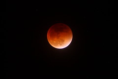 Blood Moon 9-27-15 (mikeb650) Tags: sky moon night eclipse blood astronomy lunar