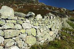 IMG_0993  Stone wall in old road (JarleB) Tags: road oldroad rldal haukeli haukelifjell steinmur