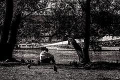 La pause (Stphane Slo) Tags: scene rhne oiseau fleuve dtente