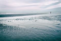 Autumn beach 3 (PascallacsaP) Tags: autumn sea fall beach water october zeeland zeeuwsvlaanderen cadzandbad zeelandicflanders