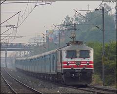--  \\m// //m\\ (Abhishek Jog) Tags: from new delhi running junction hauling late towards hardly hrs handsomeboy jhs bhopal bpl jn jhansi accelerating ghaziabad 12001 30020 wap5 hbj 0142 shatabdi ndls  habibganj ghaziabads gzbs hbjndls habibganjnewdelhi bhopaljn