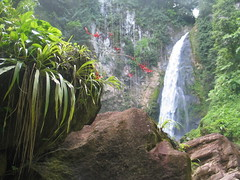 Dominica - Victoria Falls © Discover Dominica Authority