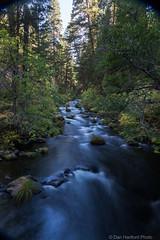 burney Creek #2 (Califdan) Tags: california statepark park ca river stream unitedstates motionblur northamerica westcoast burneyfalls mountainrange geolocation cascademountainrange mcarthurburneyfallssp actionmotion geo:state=california geo:country=unitedstates camera:make=canon exif:make=canon burneyfallssp exif:lens=ef24105mmf4lisusm exif:focallength=24mm exif:aperture=13 mcartherburneyfalls exif:model=canoneos5dmarkiii camera:model=canoneos5dmarkiii exif:isospeed=100 danhartfordphoto geo:city=mcarthurburneyfallsstatepark shastacascadecaregion geo:lat=4101559 geo:lon=121653005 5d0021815