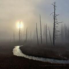 park usa sun mist nature mobile fog square landscape... (Photo: Jeffrey Sullivan on Flickr)