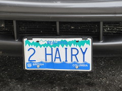 Life, liberty and the hirsute of happiness (jamica1) Tags: canada bc plate columbia license british