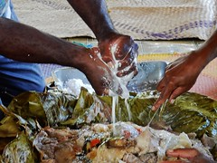 Adding Coconut Milk (mikecogh) Tags: hands traditional meal coconutmilk squeezing espiritusanto luganville laplap stmicheltechnicalcollege