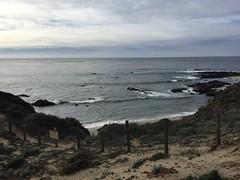 Andrew Molera National Park (Dee-AnnL) Tags: andrewmolera park outdoors california