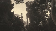 Pagoda Forest (Mobile Macrographer) Tags: bali ubud savebali savetheearth indonesia smartphone photography lgg4 temple forest trees silhouette blackandwhite blackwhite sepia cc ngc nature mother earth world planet change love beauty