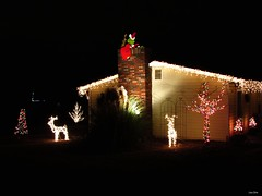 Christmas Lights (Lisa Zins) Tags: christmas lights decorations grinch thegrinch howthegrinchstolechristmas drseuss mtjuliettn lisazins 2016 night canon powershot sx500 merrychristmas