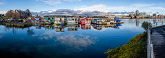 Fishermans Wharf, Victoria, BC (Isaac Hilman (@lightofisaac)) Tags: victoria bc canada fishermanswharf water boats houseboats dock ocean blue colorful color vibrant city panoramic shoalpoint walkway outdoors innerharbour fuji fujifilm xt1 isaachilman photography explorevictoria myfujifilm scenicsnotjustlandscapes
