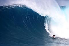 IMG_2631 copy (Aaron Lynton) Tags: peahi el nino jaws surfing surf lyntonproductions maui hawaii xxl big wave waves
