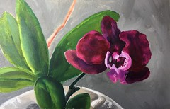 Winter Bloom (Handwork Naturals) Tags: garden dailypainting greenery purple winter painting oil flower bloom orchid edenscovillehart