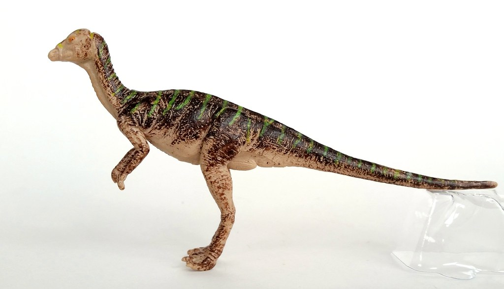 The Worlds Most Recently Posted Photos Of Dinosaur And