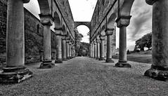 Klosterruine Paulinzella (rollo66) Tags: paulinzella thüringen klosterruine lifestyle freizeit deutschland de architektur surreal ruine säulen