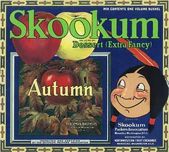 "Skookum Autumn • <a style=""font-size:0.8em;"" href=""http://www.flickr.com/photos/136320455@N08/21480326301/"" target=""_blank"">View on Flickr</a>"