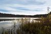 Herbstliche Wald in Karakanskiy Bor (sibwarden) Tags: autumn forest wald bor herbstliche karakanskiy