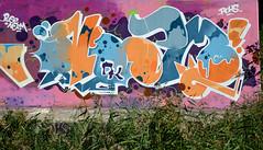 graffiti amsterdam (wojofoto) Tags: amsterdam graffiti streetart wojofoto wolfgangjosten hof amsterdamsebrug flevopark nozm nederland netherland holland