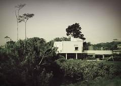 Punta Ballena (GBRSH) Tags: uruguay punta ballena uy