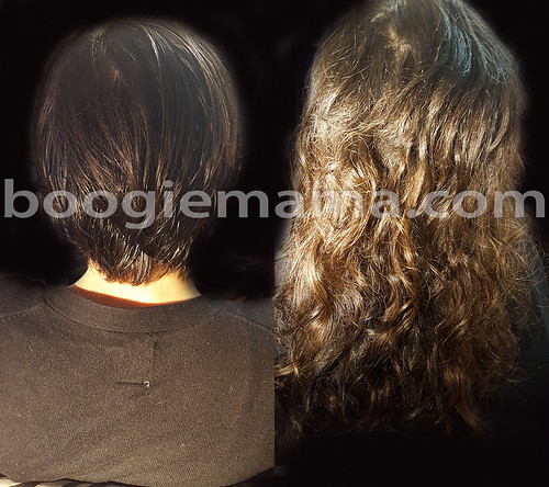 """Seattle Hair Extensions • <a style=""""font-size:0.8em;"""" href=""""http://www.flickr.com/photos/41955416@N02/22381558973/"""" target=""""_blank"""">View on Flickr</a>"""
