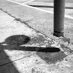 Levitate Me (Coerulus) Tags: bw 6x6 tlr film mediumformat blackwhite squareformat vintagecamera ilfordxp2 ei400 1950 rolleiflexautomat6x6 3575mmtessartwinslensreflex rolleiflexmxmodel1