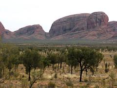 kata tjuta1 (Parto Domani) Tags: rock desert nt australia outback desierto uluru aussie northern ayers wste deserto territory dsert yulara   monolite