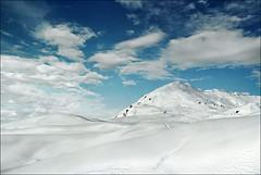 White field (Katarina 2353) Tags: winter film field landscape switzerland nikon europe swiss verbier katarinastefanovic katarina2353
