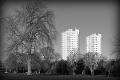 Hurst Street Estate / from Brockwell Park (Images George Rex) Tags: uk trees england bw london architecture landscape unitedkingdom britain towers flats highrise brockwellpark hernehill parkviewhouse hernehillhouse imagesgeorgerex photobygeorgerex hurststreetestate