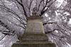 monument under a linden tree (Jules Marco) Tags: monument denkmal baum tree linde lindenbaum lindentree limetree canon eos600d sigma1020mmf35exdchsm weitwinkel wideanglelens woodquarter waldviertel österreich austria niederösterreich loweraustria outdoor
