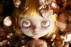 Ghostly (Antique Wolf) Tags: blythe custom bees dream land flowers silk moth bed naked doll dolld toy toys cute kawaii dark elegant light yellow ice rune playful raindrops yella licca false