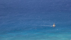 Freedom Hawaii (pato_82) Tags: honolulu hawaii usa united states america us unitedstates ohau island sea boat water dream skyline volcan friends holidays sky nature love loveit canon canon60d amazing awesome shift freedom free alhoa livingalhoa