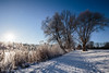 The Winter Sun (P & Y Photography) Tags: nature landscape winter sun sunlight sunrise tree trees branches path cold freezing frost snow ice cristals white blue light footsteps shadow canon 6d 1635 wideanglewide angle uwa