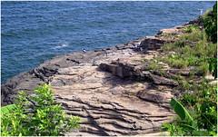 Natureza (o.dirce) Tags: orla rio de janeiro cidademaravilhosa brasil mar pedras natureza nature odirce