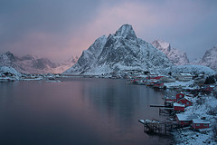 Sunset at Reine (Palnick) Tags: winter landscape norway fjord snow lofoten village sea reine water nature ocean mountain norwegian town sky scandinavia nordic house coast arctic rorbu europe fishing outdoors north island rorbuer moskenesoya harbor scenery nordland hut sunny blue bay pier scenic red sunset boat ice peaks cold islands panorama sunrise spring travel picturesque houses lights night mountains