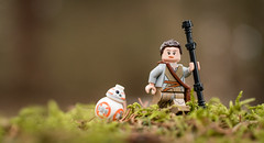 A stroll in the woods (Reiterlied) Tags: 18 35mm bb8 d500 dslr finland forest lego legography lens minifig minifigure moss nikon photography prime reiterlied rey starwars stuckinplastic toy wood