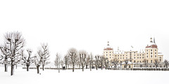 Die Allee zum Schloss (memories-in-motion) Tags: winter panorama moritzburg schloss dresden saxony germany architecture old white alley trees people mood silence branches walkmanow frost frosty ice leica leicaq minimalism highkey photography fairytale