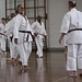 Special Kata and Kumite Course with Shihan Cummins, 8th Dan